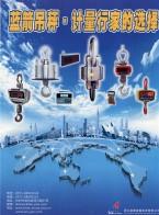 浙江蓝箭称重技术有限公司 XZ系列直视式电子吊秤 +SZ系列无线遥传式电子吊秤 +吊秤配件及易损耗品 +XK3105系列显示控制器 (1)