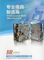 东莞市兄友模具塑胶有限公司   双色塑胶模具   双色塑件  模具制造 (1)