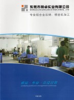 东莞市精卓实业有限公司   铝合金压铸  铝合金压铸件  铝合金压铸件 (1)