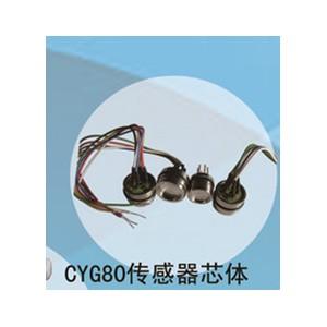 兆恒传感器厂价供应CYG80传感器芯体