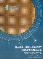 江苏中科君芯科技有限公司_新型电力电子芯片_DCS技术 (3)