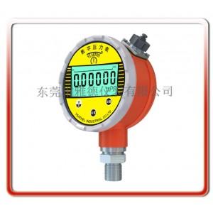 优质供应高配置精密级电池式峰值型数字压力表