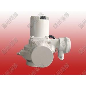 调节型电动头DQW20-WT DQTZ30