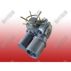 机电一体化开关型执行器DZW20-24-A00-WK