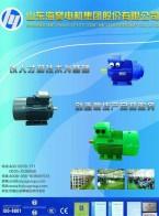 山东海誉电机有限公司  三相异步电动机_铝壳三相异步电动机_变频调速专用三相异步电动机 (1)
