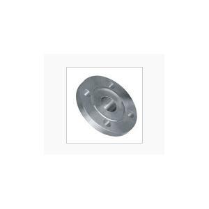 不锈钢对焊法兰(ZX-304)