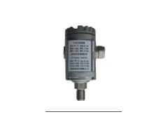 深圳市华天仪表优质 HPT-10 E+H型压