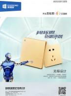 深圳英格朗电气有限公司 点开关系列 86型开关插座 外贸型开关插座 (1)
