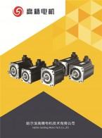 哈尔滨高精电机技术有限公司    高精数控技术  伺服电机 (6)