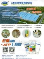 山东巨利铝业有限公司 幕墙 通用型材 门料 (1)