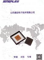 山东盛品电子技术有限公司   封装原型开发   工程样品封装   集成电路封装  上海传感器展 (1)