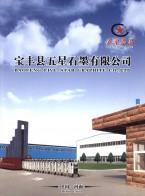 宝丰县五星石墨有限公司  双面压机_冷等静压机_高效节能环保炉 (1)