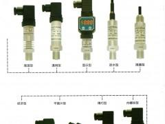 广东江威传感科技有限公司  传感器及配件   变送器   智能差压计     智能压力温度变送器  东莞空压机展 (2)