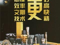 恩盛德(天津)精密工具贸易有限公司       钻孔刀具_铣削刀具_车削刀具 (1)