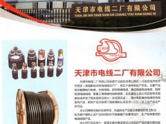 天津市电线二厂有限公司  电力电缆_控制电缆_橡皮绝缘电线电缆 (1)