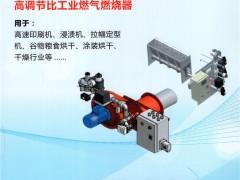 上海奥飞控制设备有限公司   烘炉用燃烧器_高温应用燃烧器_焚烧炉 (1)