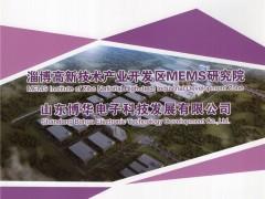 山东博华电子科技发展有限公司   微型传感器 (1)