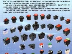 乐清市雷亚电子有限公司    LY601-LY606系列船型开关、LY11系列微动开关、PBS系列拨动开关 (1)