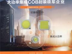 新月光电(深圳)股份有限公司    单颗仿流明系列,大功率COB集成模组系列,SMD系列 (1)