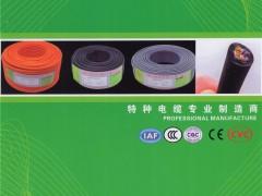 深圳市荣缆科技有限公司       RVV信号控制线、RVVP屏蔽线、RVVB扁形电源线、HBV电话线 (1)