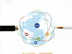 深圳市捷福欣实业有限公司       电子线束  数据线 (1)