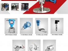 上海天豪自动化仪表厂   压力传感器芯体  电容式变送器   电容式压力/差压变送器  平法兰变送器  插入式变送器  重点 (1)