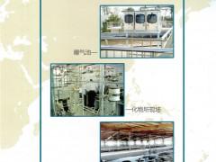 弗朗电子(大连)有限公司   水工业仪表   光电污泥浓度计  超声波污泥界面计  荧光法溶氧仪  多国仪器仪表展 (1)
