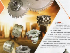 常州市德盛超硬工具有限公司    金刚石锯片、金刚石刀具、汽车刀具、线路板刀具 (1)
