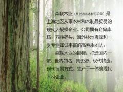 上海森联木业发展有限公司 (1)