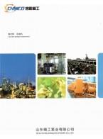 山东精工泵业有限公司 真空泵系列 离心泵 压缩机系列 (1)