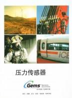 福迪威西特传感工业控制(天津)有限公司  压力传感器_微型电磁阀_预装射流系统 (1)