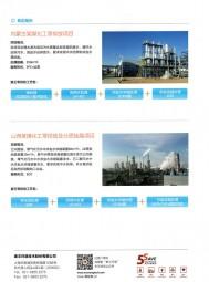 麦王环境技术股份有限公司    水处理 污泥处理 油泥处理 (1)