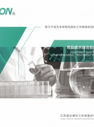 江苏蓝必盛化工环保股份有限公司  预处理技术_生化处理技术_深度处理技术 (1)