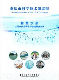 重庆远感科技有限公司   水质在线分析仪表、水质在线监测传感器、常规水质在线分析仪表、试剂法水质在线分析仪表、智慧水质云平台 (14)