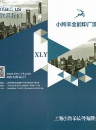 上海小羚羊软件有限公司 票据印刷ERP 数码印刷ERP 合版印刷ERP (2)