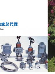江元(重庆)科技集团股份有限公司    智能压力变送器、物(液)位计及温度传感器, (3)