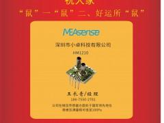 深圳小卓科技有限公司 经理王长青 2020新春寄语 一百零八星报喜之地然星