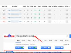 仪器仪表SEO优化案例  上海立格仪表