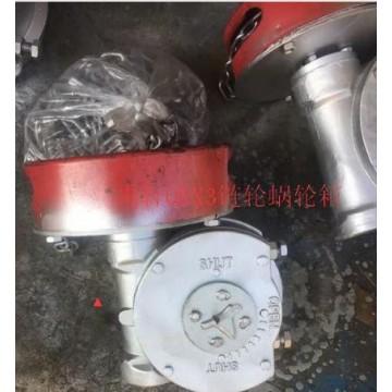 带链条阀门蜗轮箱QDX3-6煤化工阀门