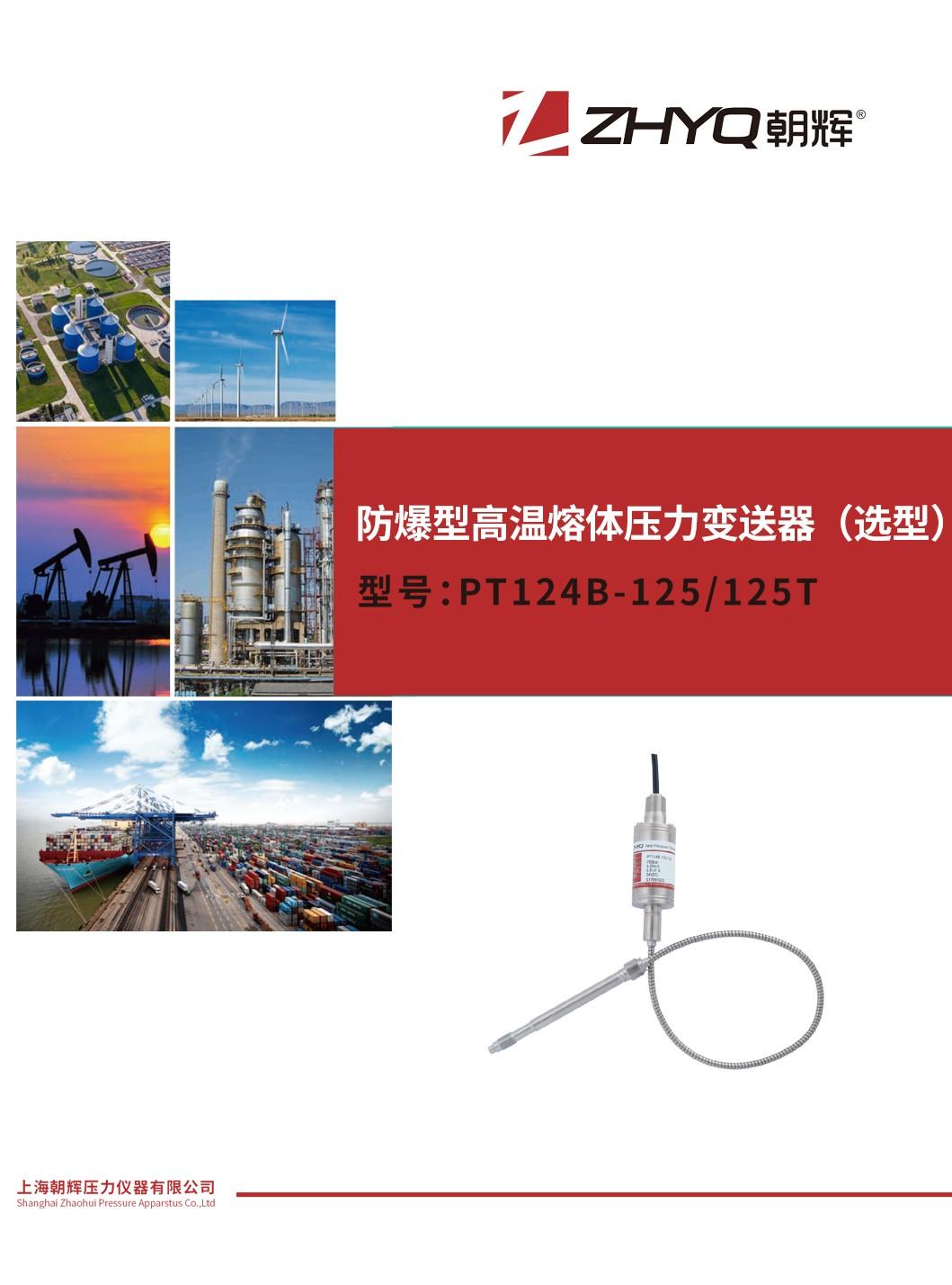 PT124B-125 防爆型高温熔体压力变送器(选型)_上海朝辉