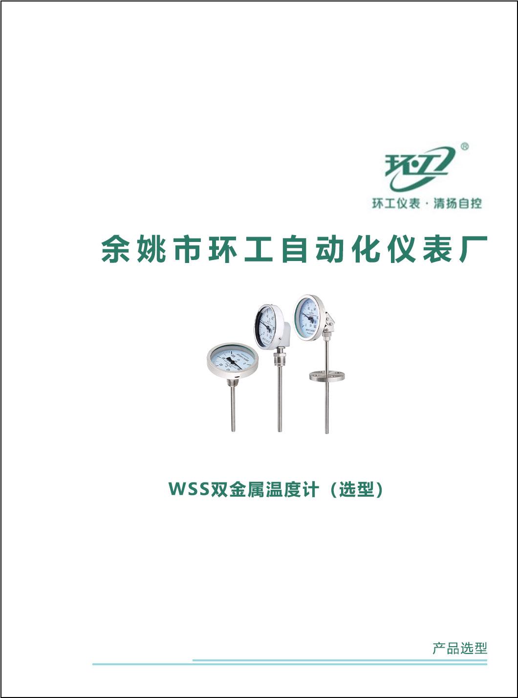 WSS双金属温度计-环工仪表-清扬自控