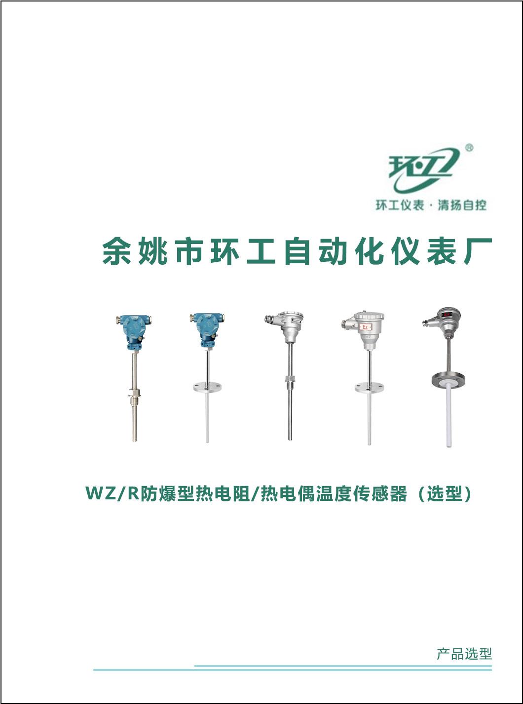 WZ/R防爆型热电阻/热电偶温度传感器-环工仪表-清扬自控