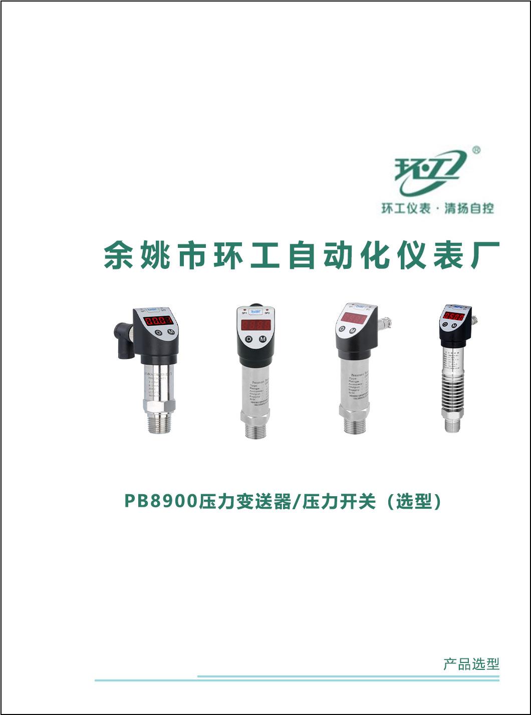 PB8900压力变送器/压力开关-环工仪表-清扬自控