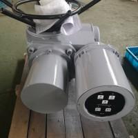 DZW60-24-A00-WK 多回转电动头
